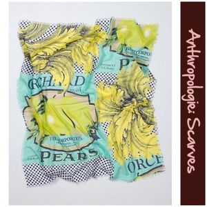 """Anthro """"Pear Orchard Scarf"""" by Echo"""